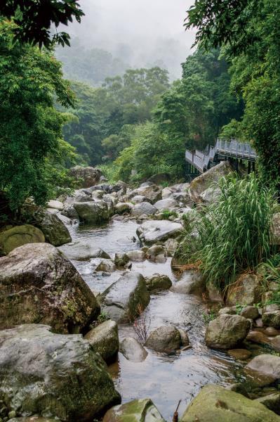 蓬萊溪護魚步道 溪流