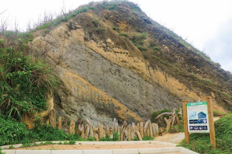 過港貝化石層 外觀