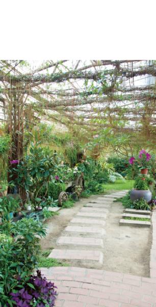 三義土雞城花園餐廳 小庭園
