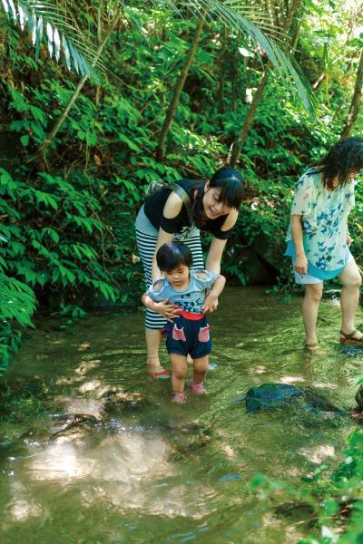 四十二份坪步道 自然湧泉池