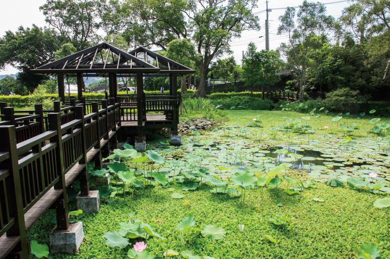 百年埤塘 生態池