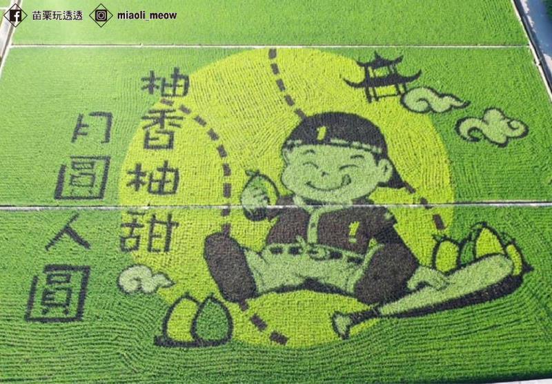 2020的二期彩繪稻田將中秋意象結合季節性的文旦柚,搭配棒球小子,呈現正能量!
